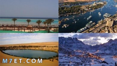 Photo of السياحة الشتوية في مصر | افضل 5 اماكن للسفر في الشتاء في مصر