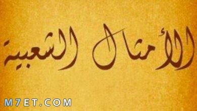 Photo of أمثال وحكم من صميم تجارب الحياة