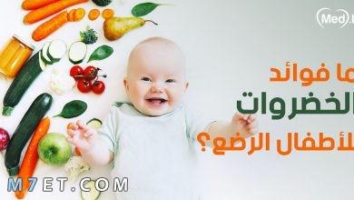 Photo of جميع فوائد الخضار للاطفال | أفضل 3 وصفات خضار للرضع