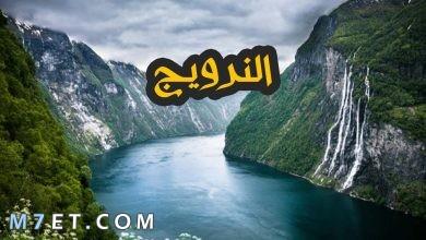Photo of افضل اماكن سياحية في النرويج وأشهر 7 مدن سياحية للمسافرون العرب