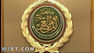 Photo of تقرير مفصل عن جامعة الدول العربية ودورها في نهوض المجتمع