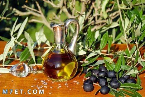 فوائد زيت الزيتون للشعر الجاف