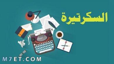 Photo of صفات السكرتير الناجح وأبرز 5 مهام للسكرتير التنفيذي
