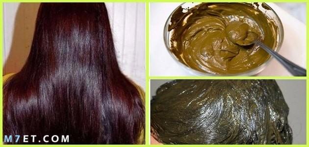 فوائد الحناء للشعر المتساقط 3 وصفات لمنع تساقط الشعر