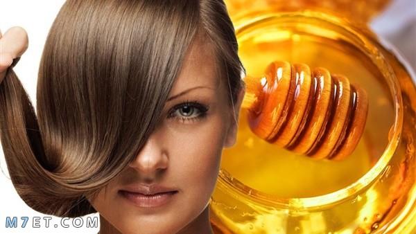 فوائد العسل للشعر الجاف