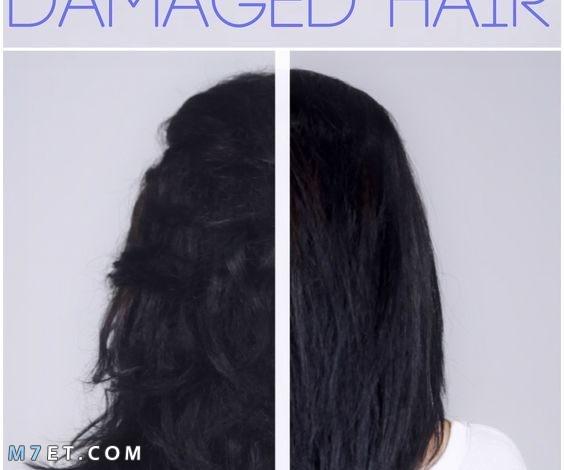 ماسك الشعر التالف| افضل 9 ماسكات للشعر التالف والجاف