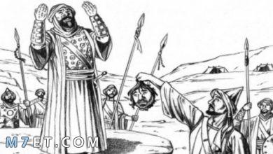 Photo of أبو جهل لماذا كان يكره الرسول هل تعرف؟