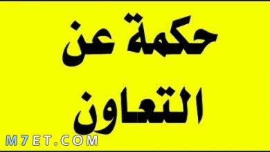 Photo of حكمة عن التعاون توضح للأجيال المتعاقبة ضرورة التعاون لتقدم الأمم
