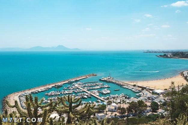 أجمل المناطق السياحية في تونس