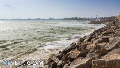 Photo of أجمل المناطق السياحية في تونس جنة خضراء لم تراها من قبل