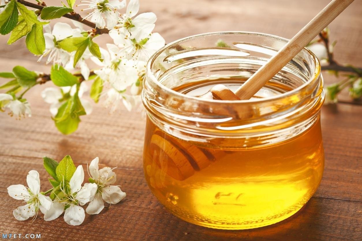 فوائد العسل للشفاه