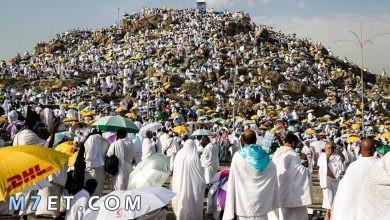 Photo of دعاء للميت يوم عرفة الدعاء يوم عرفات ليغفر الله كل ذنوب