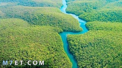 Photo of اطول نهر في العالم| حقائق لا تعرفها عن نهر النيل