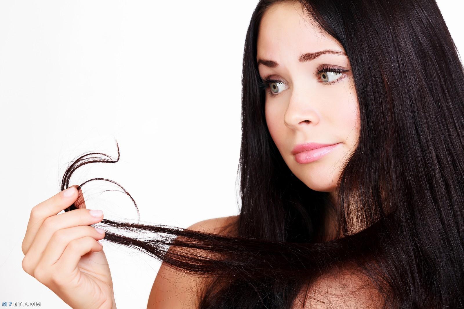 اسباب توقف نمو الشعر