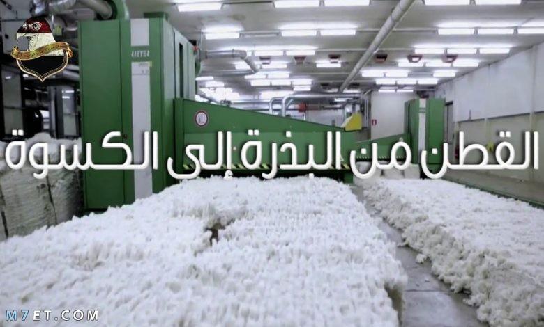 مراحل صناعة القطن