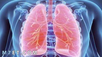 Photo of أعراض التهاب الجهاز التنفسي وطرق العلاج