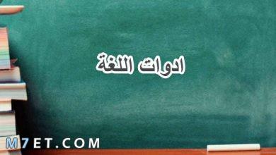 Photo of ادوات اللغة العربية وأبرز استخداماتها بأنواعها المختلفة
