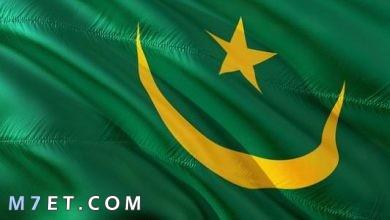 Photo of أسعار السفر إلى موريتانيا وأشهر 8 مناطق سياحية بها