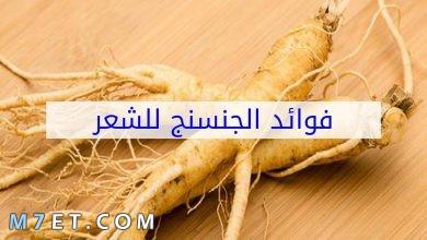 Photo of فوائد الجنسنج للشعر وطريقة استخدامه كماسك للشعر