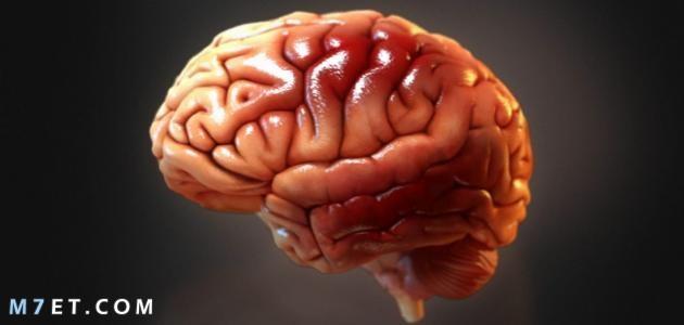 اسباب تلف خلايا المخ