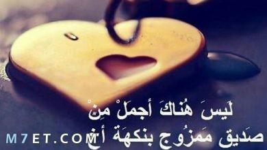 Photo of كلام عن الصديق الوفي ذلك القابع في ركن القلب