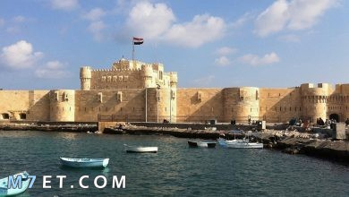 Photo of أفضل الأماكن السياحية في الإسكندرية يمكن زيارتها 2021