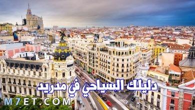 Photo of افضل الاماكن السياحية في مدريد لعام 2021