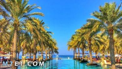 Photo of أفضل الأماكن السياحية في مسقط لعام 2021