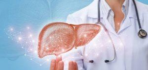 أسباب زيادة إنزيمات الكبد وطرق العلاج بـ 3 أعشاب طبيعية