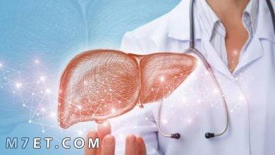 Photo of أسباب زيادة إنزيمات الكبد وطرق العلاج بـ 3 أعشاب طبيعية
