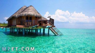 Photo of أفضل الأماكن في إندونيسيا لعام 2021