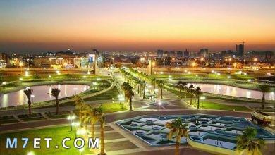 Photo of أفضل الأماكن السياحية في الشرقية لعام 2021