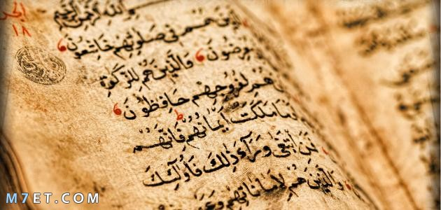 بحث عن الثقافة الاسلامية بالتفصيل