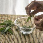 فوائد الميرمية للشعر الجاف والأبيض وطريقه استخدامه بالتفصيل