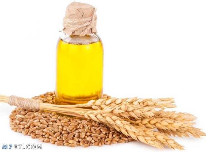 فوائد جنين القمح للشعر