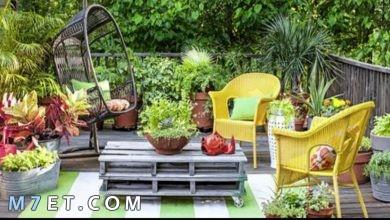 Photo of أفكار حدائق بسيطة