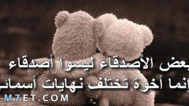 Photo of كلام جميل لصديق تُربت على قلبه الحاني