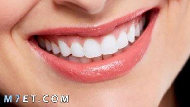 Photo of ما أهمية الأسنان وكيفية العناية بصحتها