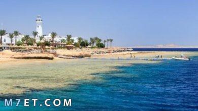 Photo of أجمل شواطئ شرم الشيخ وما الذي يجذب السياح لها؟!
