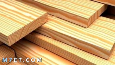 Photo of من أنواع الخشب واستخداماته