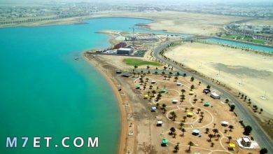 Photo of افضل الاماكن في ينبع لعام 2021