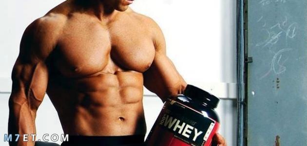 استخدام البروتين