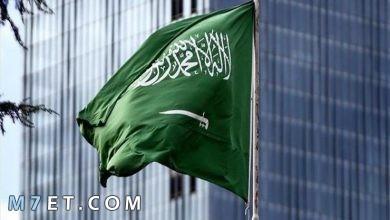 Photo of جمعية القلب السعودية تسجيل الدخول والتسجيل في الدورات التدريبية