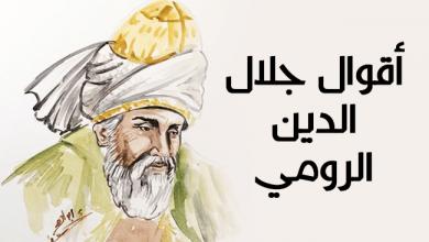 Photo of أقوال جلال الدين الرومي | 100 عبارة مشهورة له
