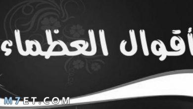 Photo of حكم العظماء | أشهر 100 حكمة دونت نظرتهم في الحياة