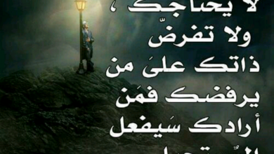 Photo of كلمات معبرة عن الحياة تجدد معنى الكون كله بثنايا القلب
