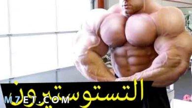 Photo of ارتفاع هرمون التستوستيرون عند الرجال الأعراض والأسباب المؤدية لذلك