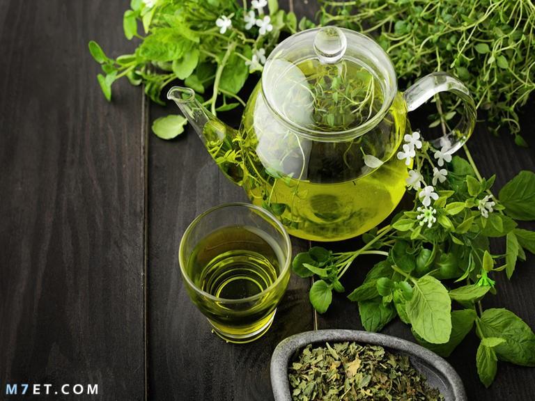 فوائد الشاي الاخضر للبشرة