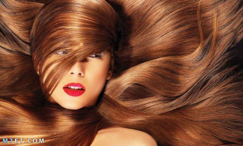 زيادة كثافة الشعر
