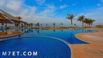 Photo of السياحة في تبوك السعودية لعام 2021